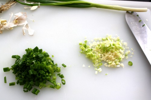 garlic and green onions