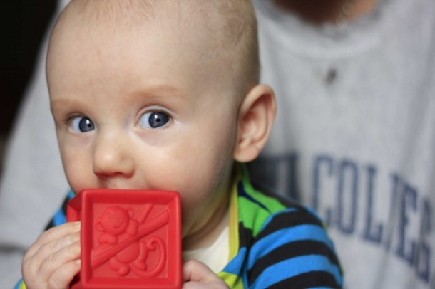 baby eating red block